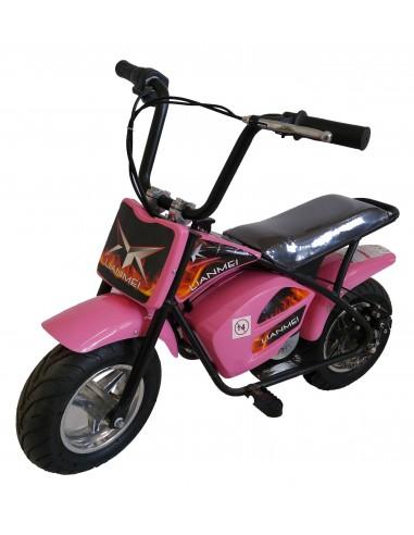 Monkey bike 24V
